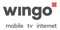 1Gbit/s Internet + TV per CHF 54.-/mese