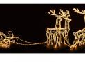 Leuchtfigur RENTIERE SCHLITTEN LED bei Jumbo